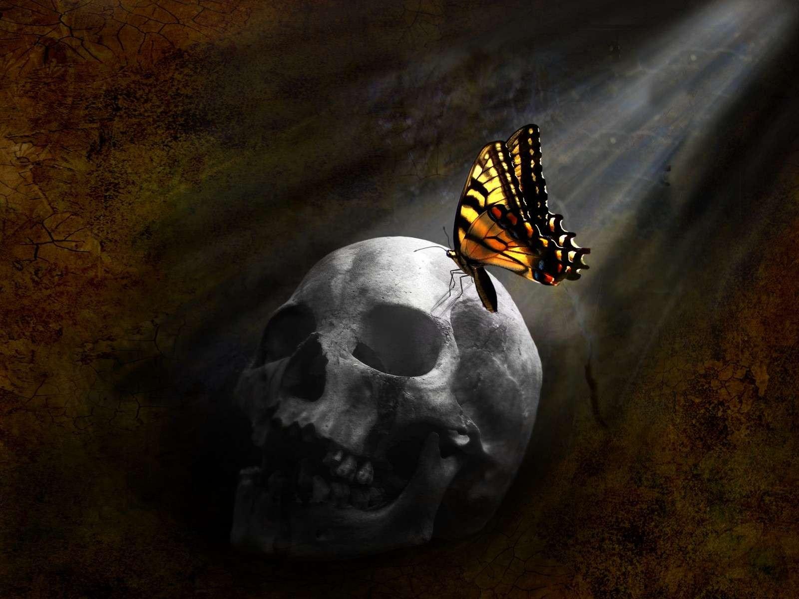MK (Mind Kontrolle) Ultra Program: PsyOps & Satanic Infiltration