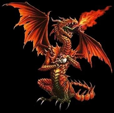 red fire dragon - photo #12